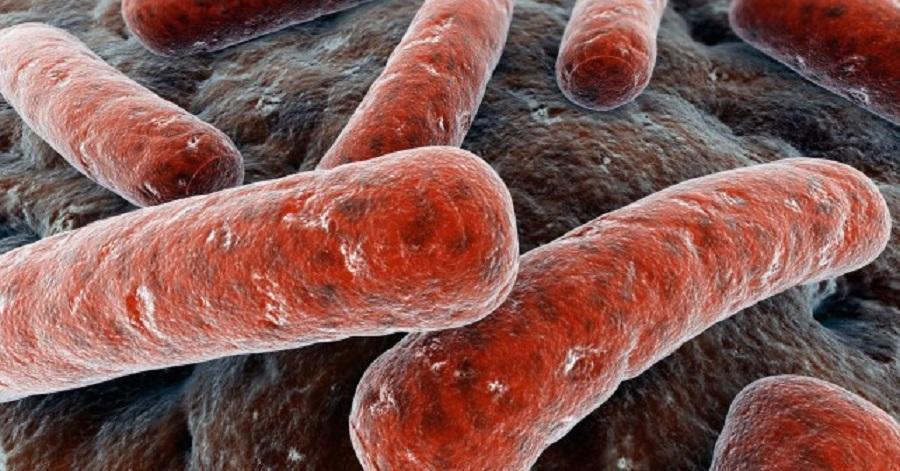 Tos y flemas por más de 15 días pueden ser los síntomas de tuberculosis